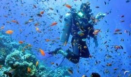 Pacchetto Diving Hotel La Mantinera Praia a Mare